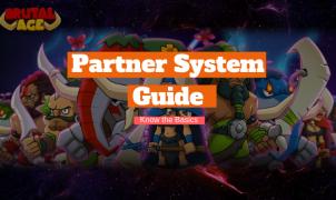 Partner System Basics